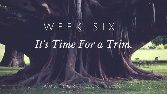 amateur-hour-blog